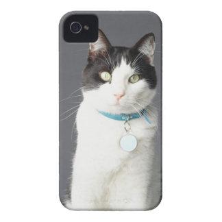 Black and white cat iPhone 4 Case-Mate case