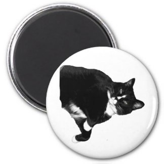 Black and White Cat Looking Up Cutout 6 Cm Round Magnet
