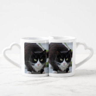 Black and white cat lovers mug