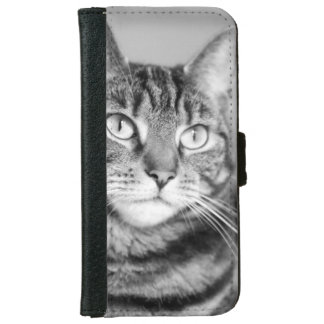 Black and White Cat Photography iPhone 6 Wallet Case