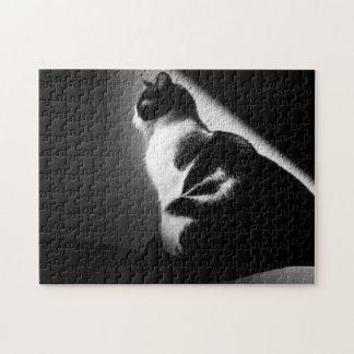 Black and White Cat Portrait Jigsaw Puzzle