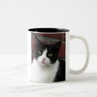 black and white cat Two-Tone coffee mug