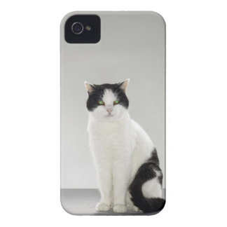 Black and white cat with glowing green eyes iPhone 4 cover