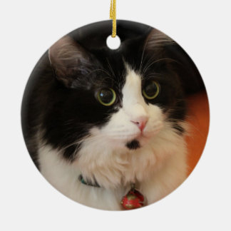 Black and White Cat with Round Eyes Christmas Ornament
