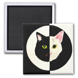 Black and white cats face yin and yang square magnet