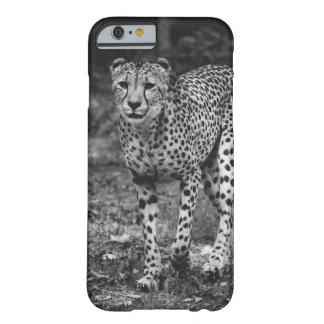 Black and White Cheetah Photograph, Animal iPhone 6 Case