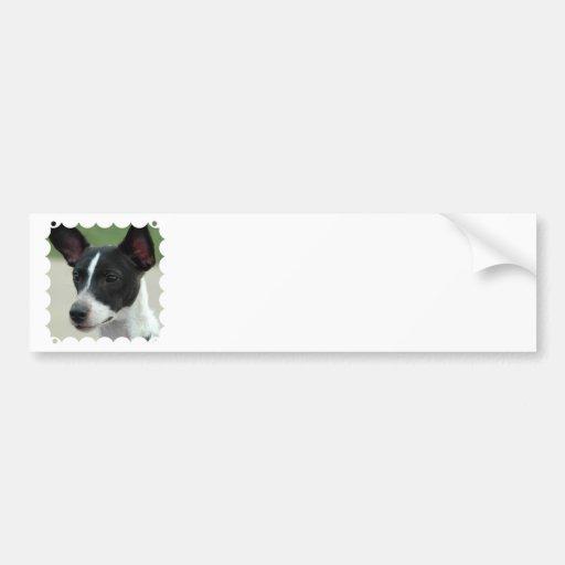 Black and White Chihuahua Bumper Stickers