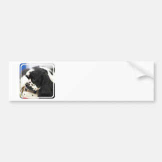 Black and White Cocker Spaniel Bumper Sticker