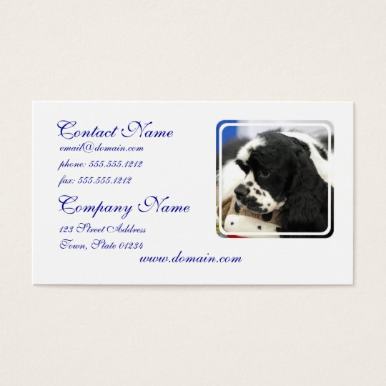 Black and White Cocker Spaniel Business Cards