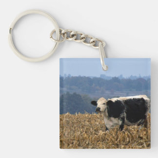 Black and White Cow grazes in freshly plowed field Double-Sided Square Acrylic Key Ring