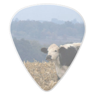 Black and White Cow grazes in freshly plowed field White Delrin Guitar Pick