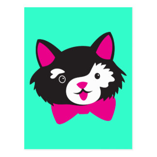 Black and White Cutie CAT Post Card