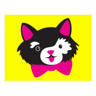 Black and White Cutie CAT Postcard