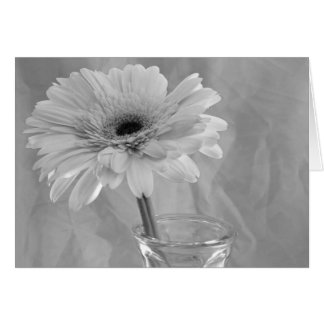 Black and White Daisy Card
