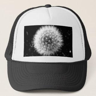 Black and white dandelion cap