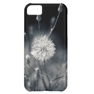 Black and White Dandelion Photography iPhone 5C Case
