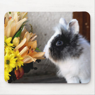 Black and white dwarf rabbit mouse pad