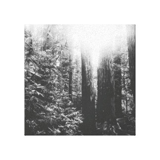 Black and White Enchanted Forest Canvas Print