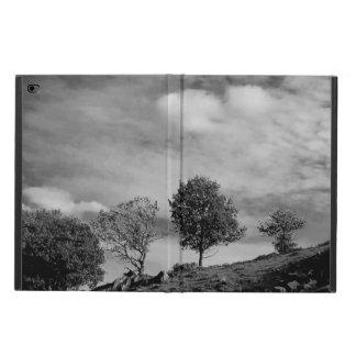 Black and white English countryside iPad case