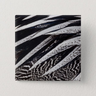 Black And White Feather Abstract 15 Cm Square Badge