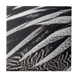 Black And White Feather Abstract Tile