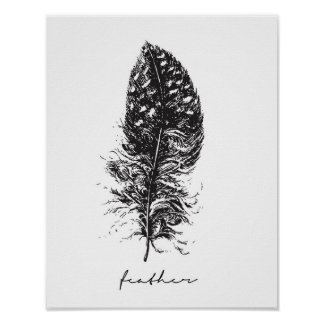 Black and white feather poster
