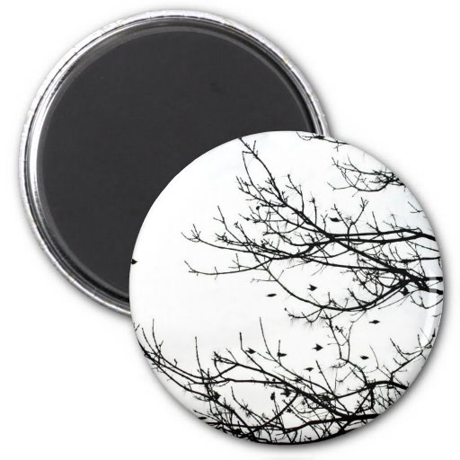Black and White Flock of Birds on Trees Magnet