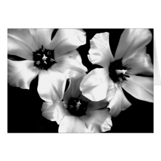 Black and White Floral Notecard Note Card