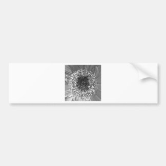 Black And White Floral Photography Car Bumper Sticker