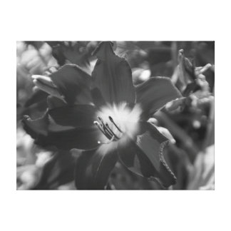 Black and white flower canvas print