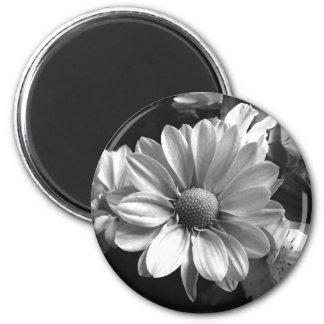 Black and White Flower Photo 6 Cm Round Magnet