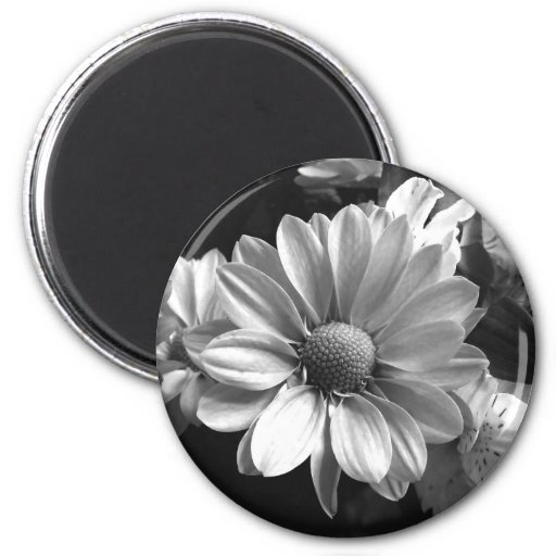 Black and White Flower Photo Refrigerator Magnet