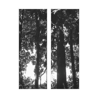 Black and White Forest Stretched Canvas Prints