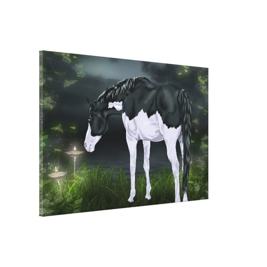 Black and White Frame Overo Paint Horse Canvas