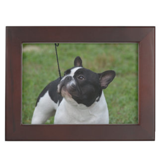 Black and White French Bulldog Keepsake Boxes