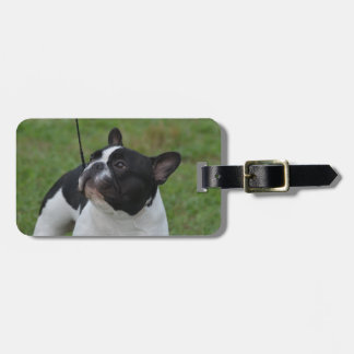 Black and White French Bulldog Luggage Tag