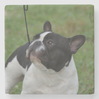 Black and White French Bulldog Stone Coaster