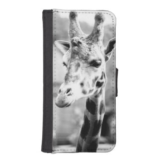 Black and White Giraffe Portrait Photography