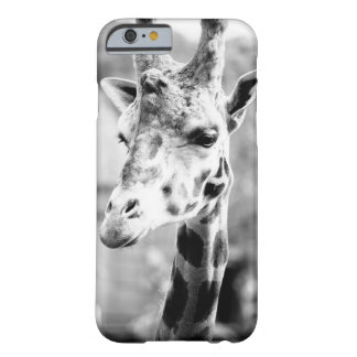 Black and White Giraffe Portrait Photography Barely There iPhone 6 Case