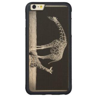 Black and White Giraffes Two Giraffes iPhone 6 Plus Case