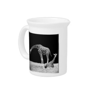 Black and White Giraffes Two Giraffes Drink Pitchers