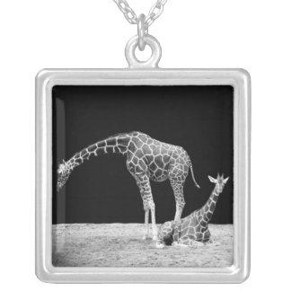 Black and White Giraffes Two Giraffes Square Pendant Necklace