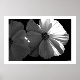 Black and White Half Sun Poster