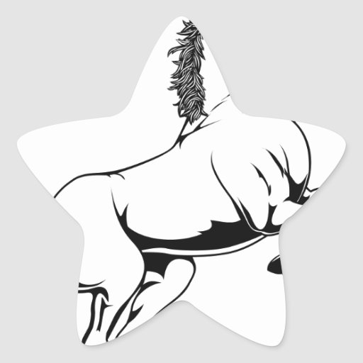 Black and white horse illustration star stickers