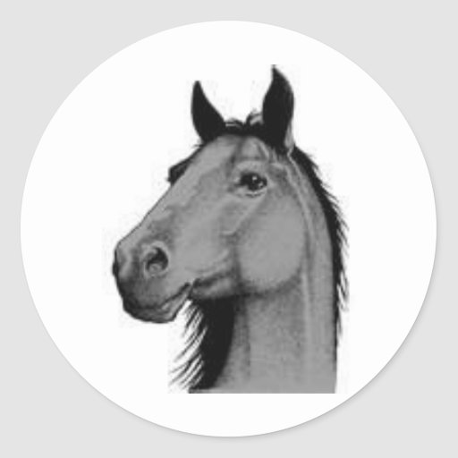 black and white horse sticker