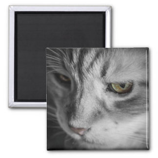 Black and White Image of Cat Square Magnet