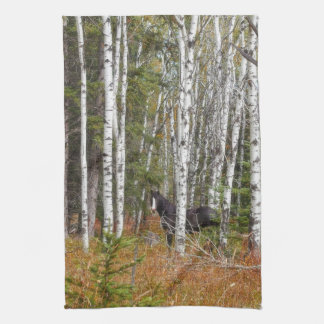 Black And White In Aspen Horse Kitchen Towel