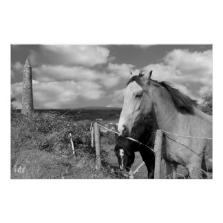 black and white Irish horses and ancient round tow Posters