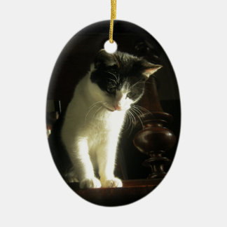 Black and White Kitten Cat Ceramic Oval Decoration