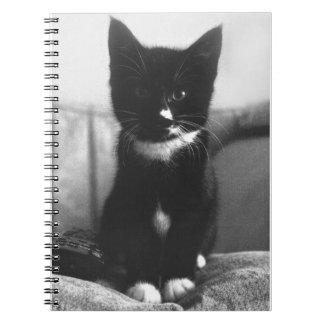 Black and White Kitten Notebooks